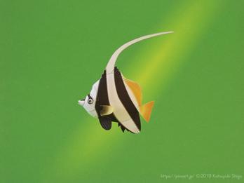 月刊ダイビングワールド掲載、海の生き物のペーパークラフト7月号から9月号