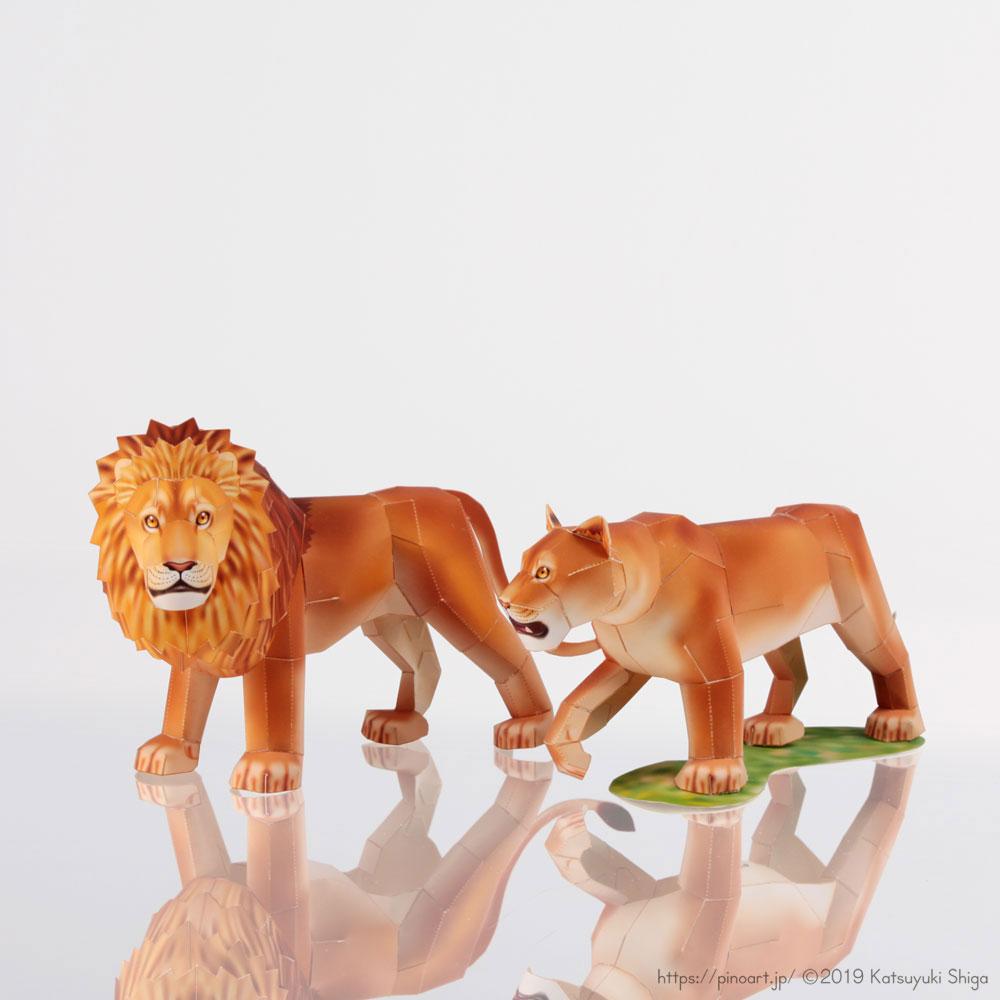 動物のペーパークラフト、オスライオンとメスライオン